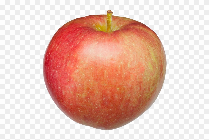 Paula Red Apple Apple - Paula Red Apple Png, Transparent Png #1945877