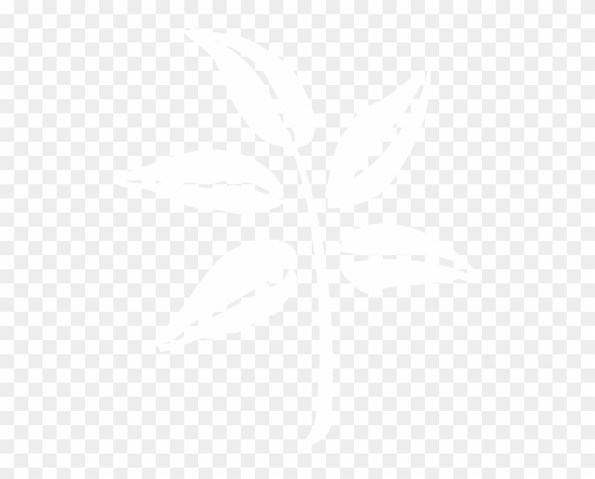 White Leaf Silhouette Transparent Clipart@pikpng.com