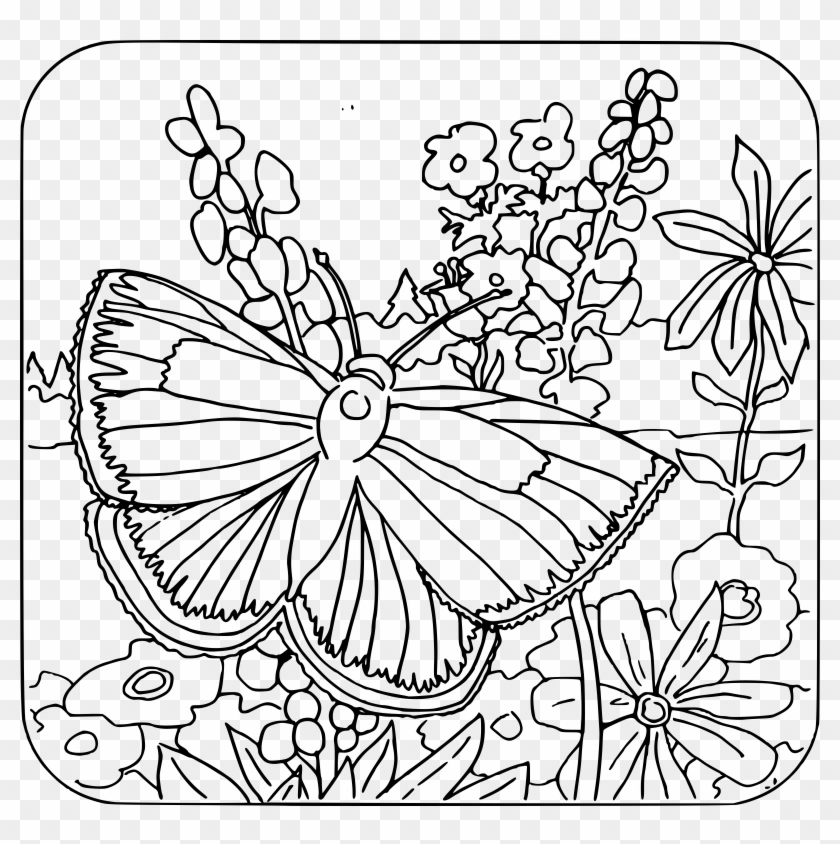 Butterfly Coloring Pages For Girls With Coloring Book - Back To School Coloring Pages Clipart #1980879