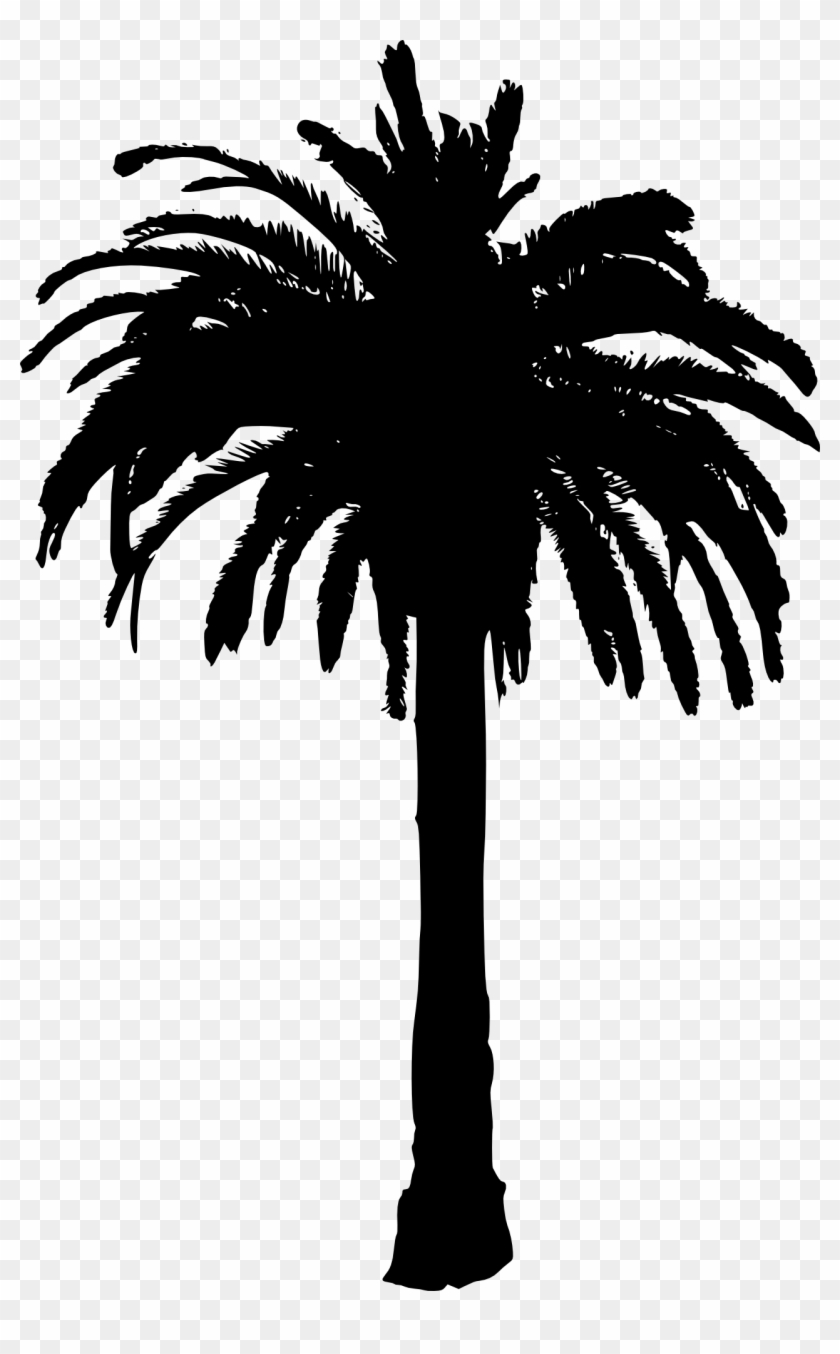 15 Palm Tree Silhouettes Png Transparent Background - Palm Tree Silhouette Transparent Background Clipart #29071