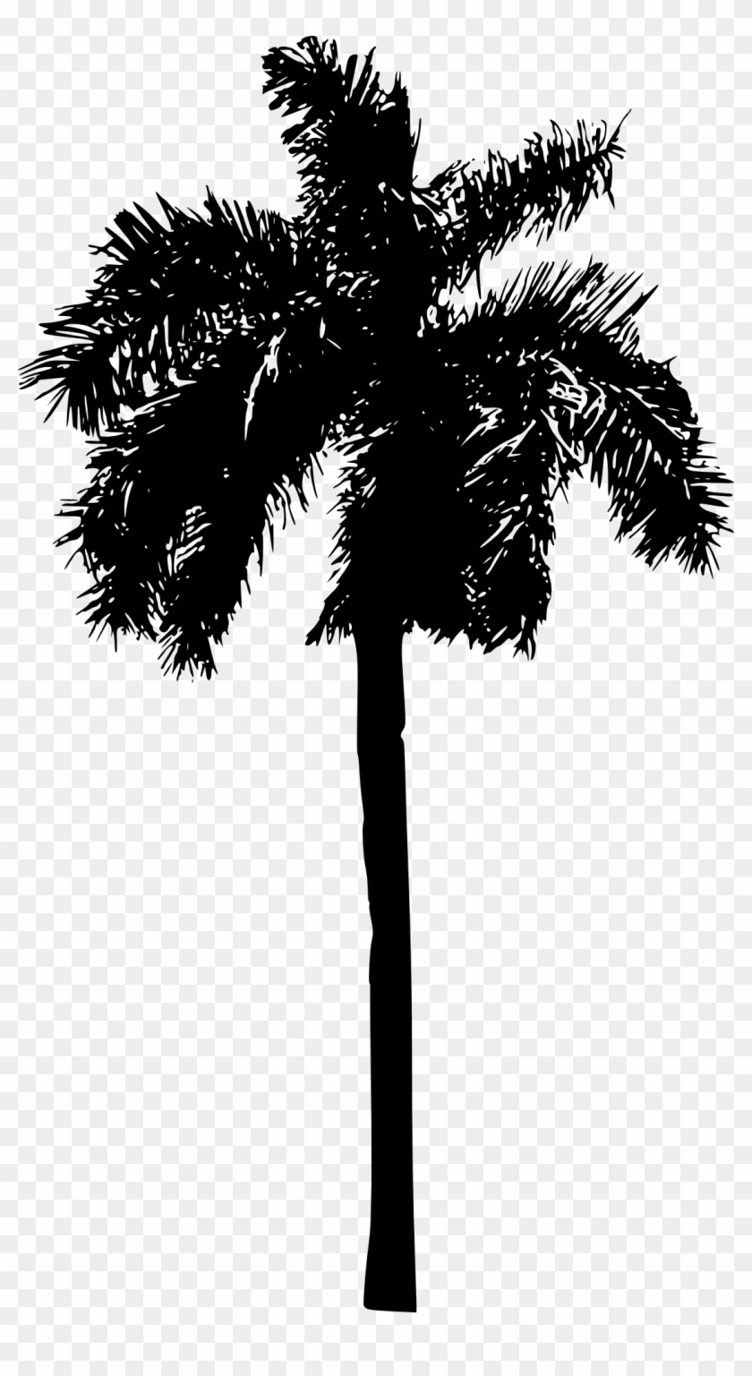 Free Download - Palm Tree Clipart #29090