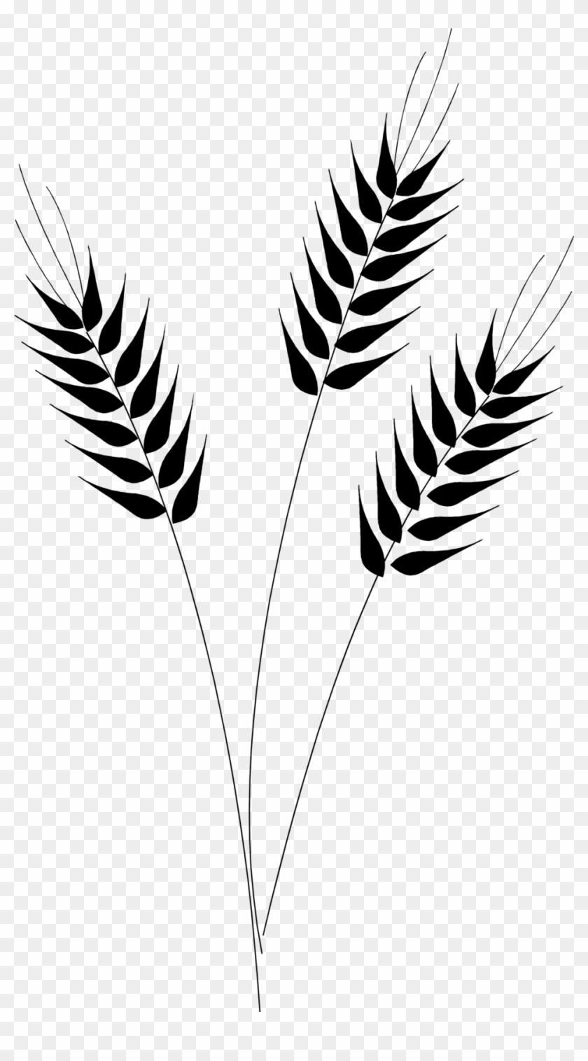 Grain Clipart Wheat Silhouette - Wheat Clipart Transparent Background - Png Download #200251