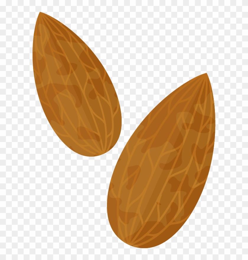 Almond Clip Art
