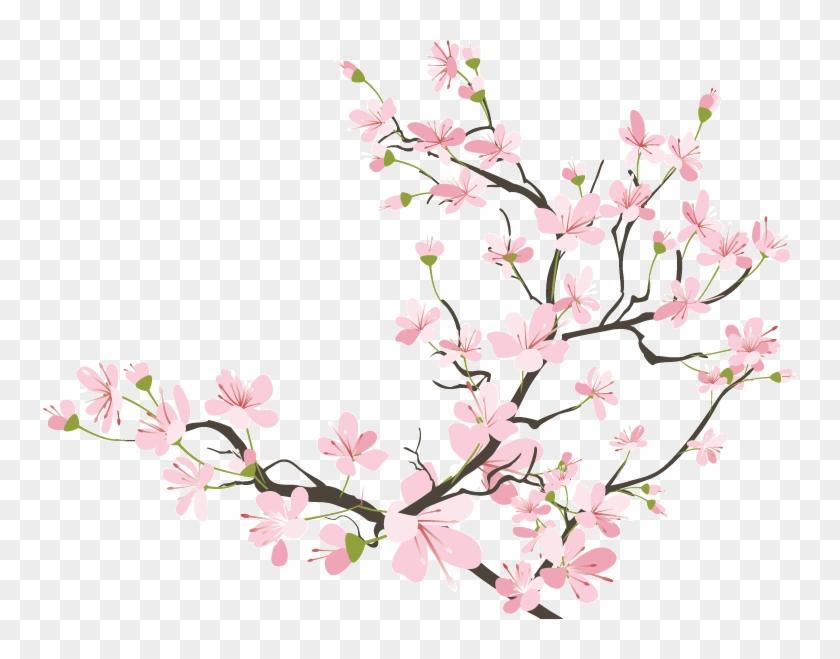 Cherry Blossom Clipart Transparent Tumblr - Japanese Cherry Blossom Transparent - Png Download #216566