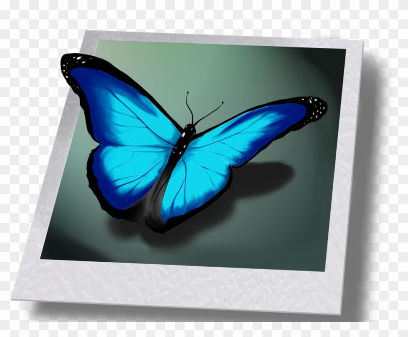 Life Is Strange Png - Butterfly From Life Is Strange Clipart #2136410