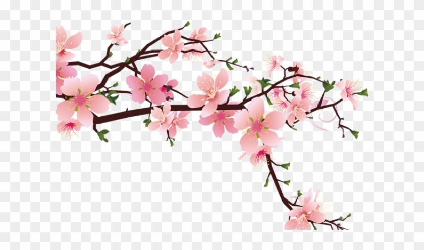 Drawn Cherry Blossom Strawberry - Peach Blossom Drawing Png Clipart #2144008