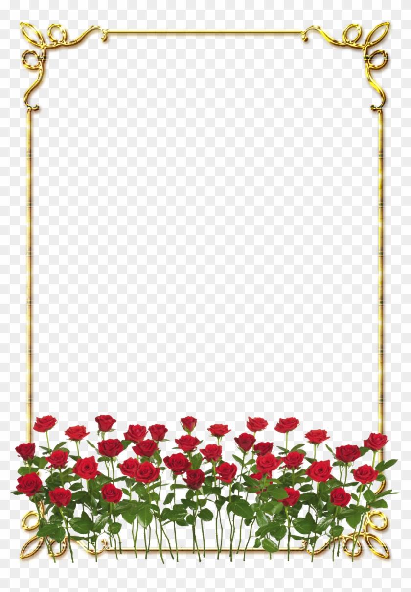 Frames Png Douradas Com Rosa Vermelhas - Rose Border Flower Design Clipart #2230567