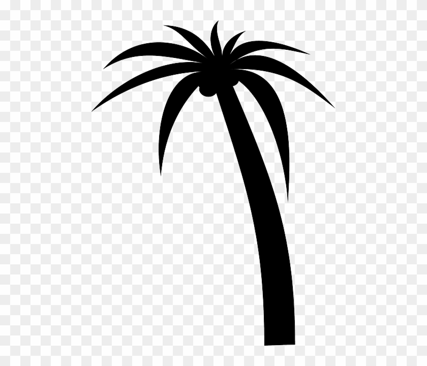 Silhouette Black, Icon, Simple, Outline, Drawing, Silhouette - Palm Tree Clip Art Vector - Png Download #2247601