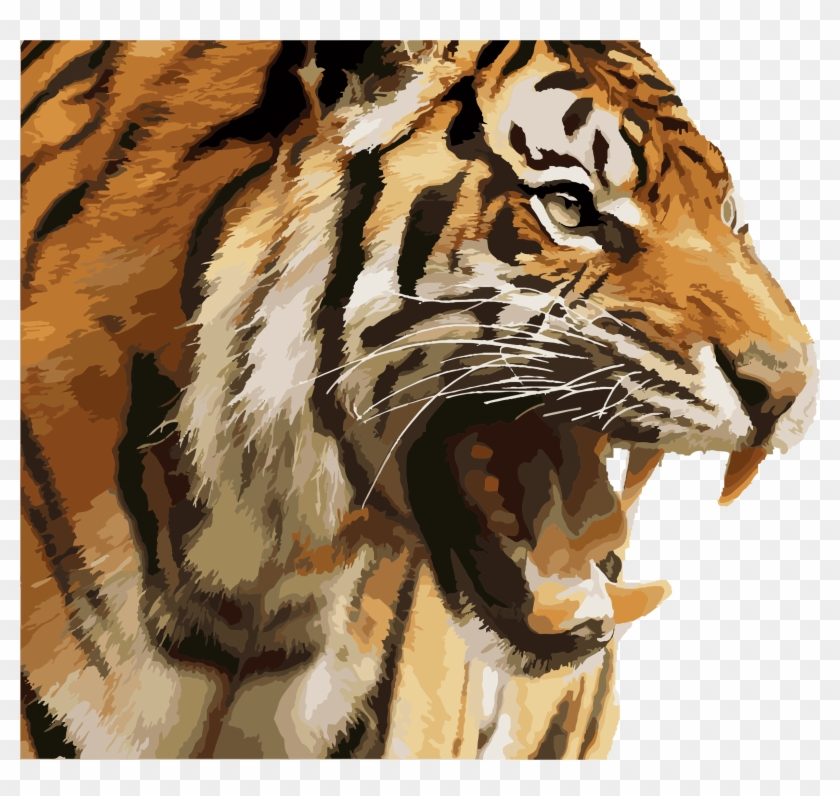 Big Image - Angry Tiger Face Png Clipart@pikpng.com
