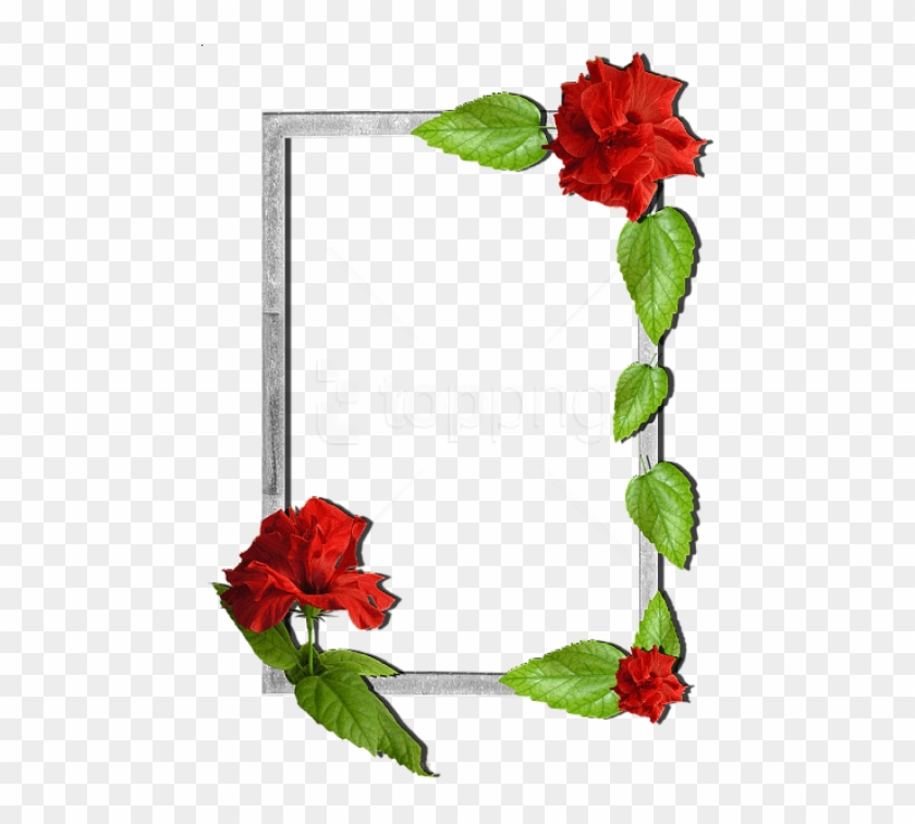 Free Png Flowers Frame Background Best Stock Photos - Flower Frames Clipart #2293452