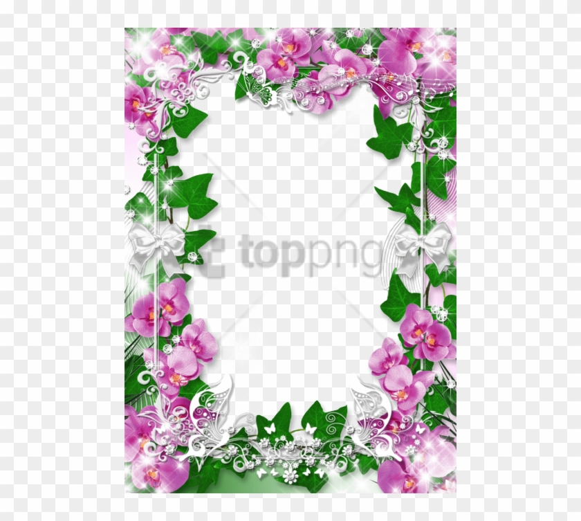 Free Png Orchid Flower Frame Png Image With Transparent - Orchids Frames And Border Design Clipart #2394424