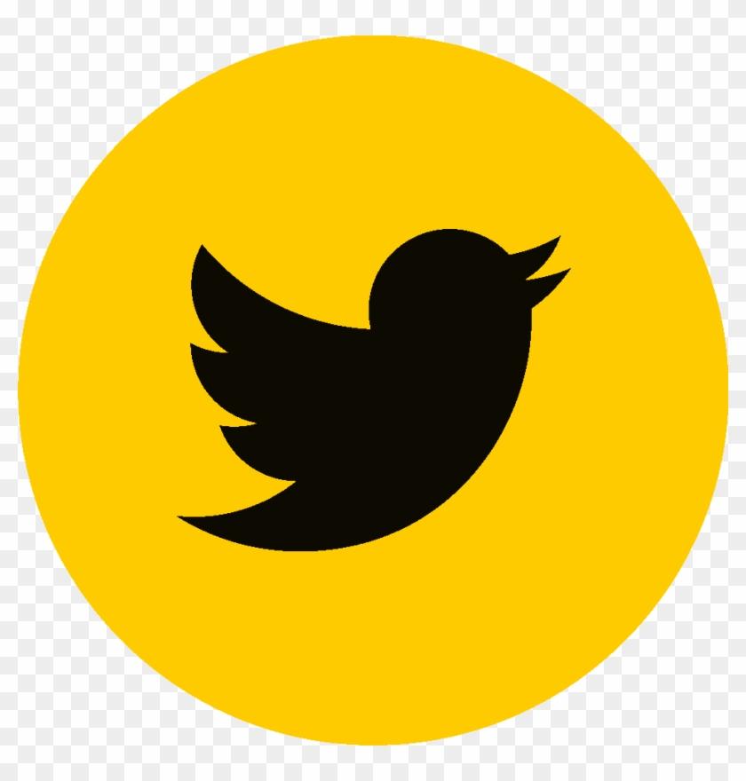 Manou Bolomik Sur Facebook Manou Bolomik Sur Twitter - Twitter Png Logo Gif Clipart #2399529