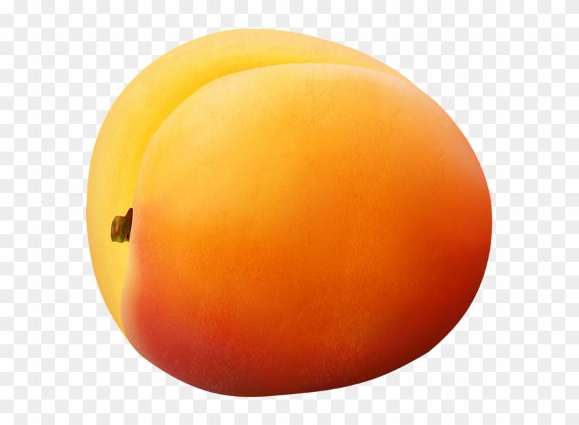 Apricot Transparent Png Image - Sphere Clipart #2404123