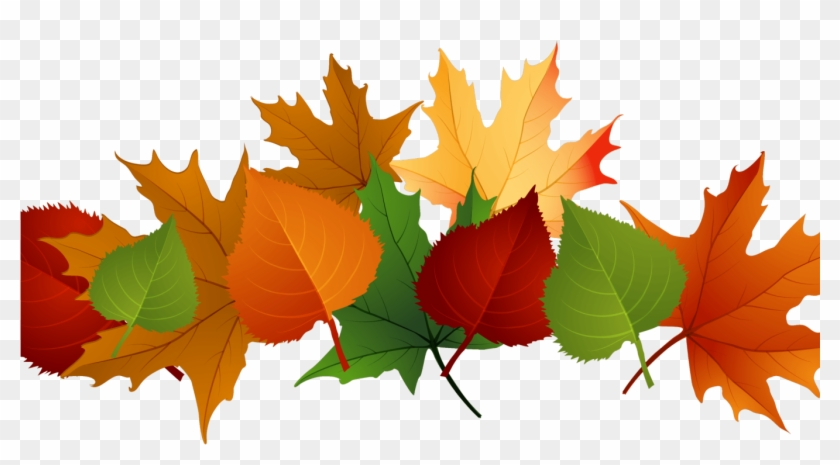 Fall Leaves Transparent Background Clipart #2423111