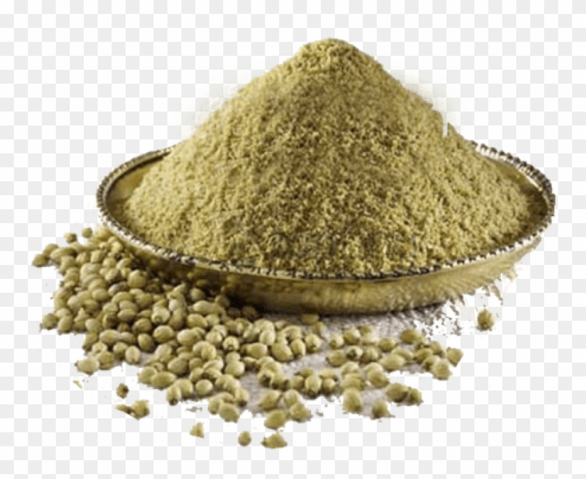 Free Png Coriander Powder Png Image With Transparent - Coriander Seeds Powder Png Clipart@pikpng.com
