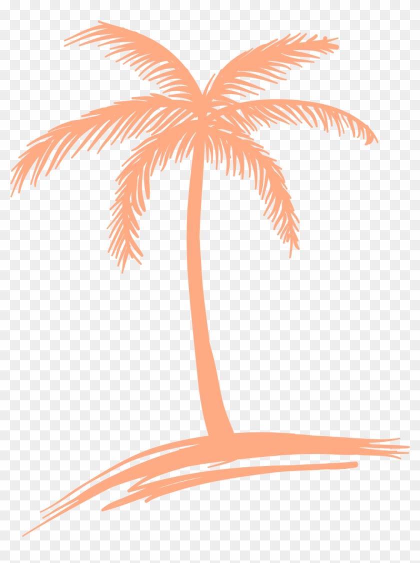 Peach Palm Tree Logo - Coconut Tree Line Drawing Clipart #2441510