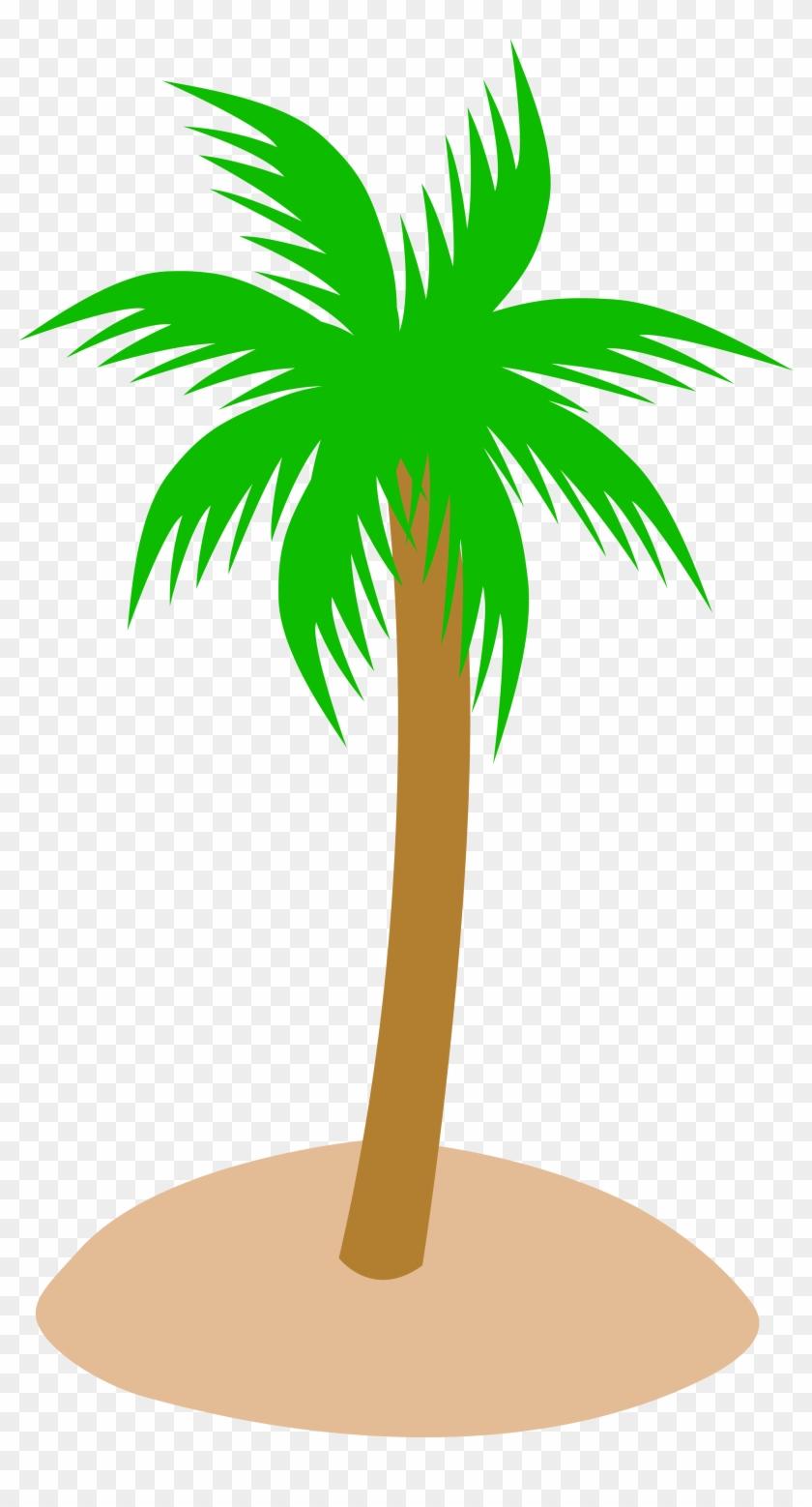 Tropics Clipart Tree Top - Palm Tree Clip Art - Png Download #255244