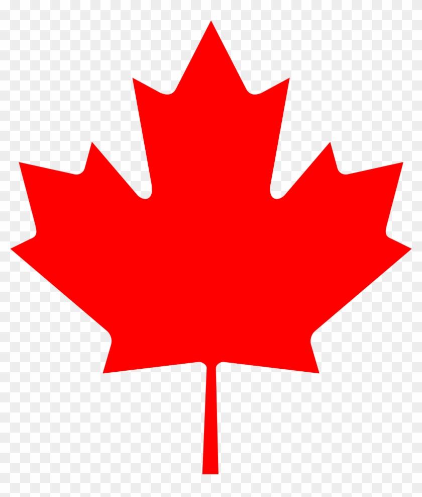 Maple Leaf Outline Png Canada Symbol Maple Leaf Clipart
