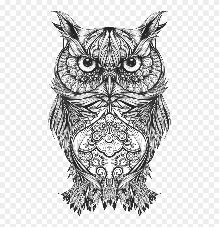 Body Owl Sketch Art Tattoo Drawing Clipart Tattoo Mandala Owl Png Download 2546215 Pikpng