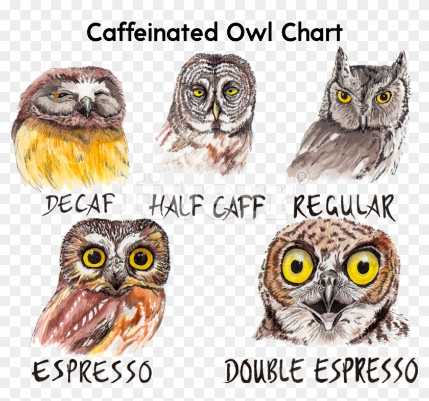 Big Worksample Image - Caffeine Owl Clipart #2553820