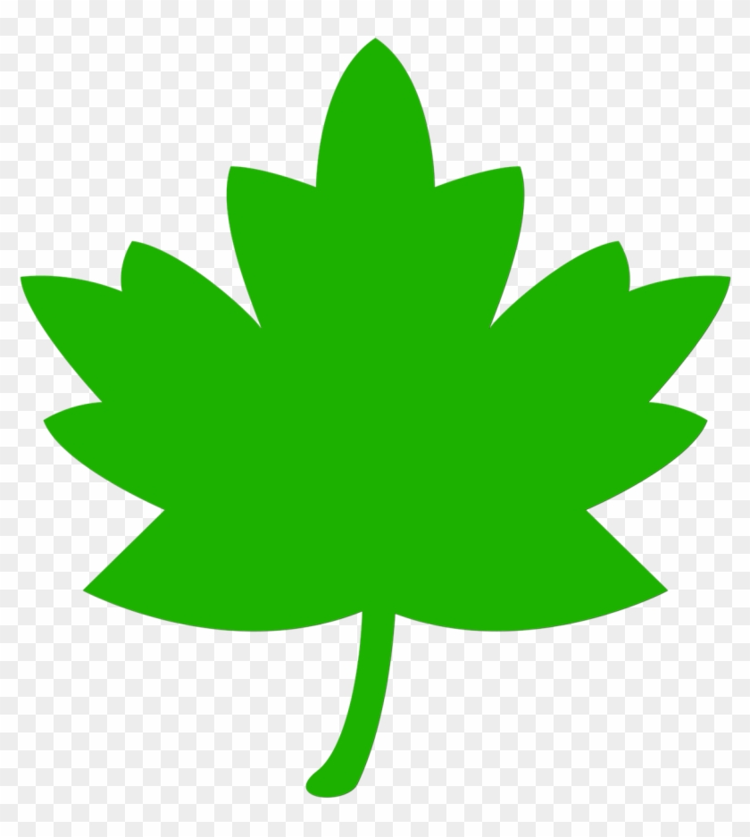 Icon Leaf Green Tree Nature Png Image Fall Leaves Clip Art Transparent Png 2571888 Pikpng