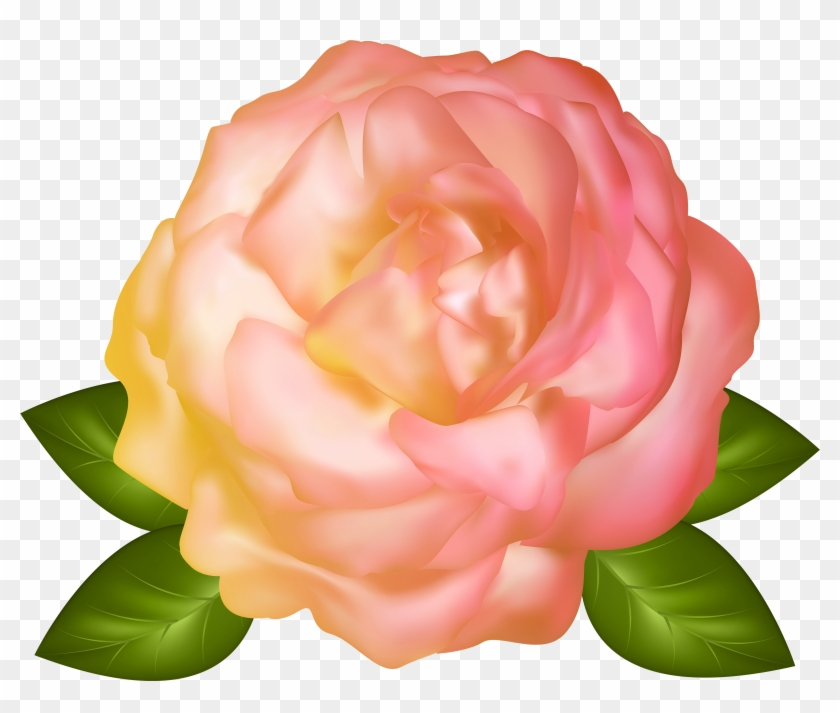 Beautiful Yellow Rose Transparent Png Image - Beautiful Garden Full Hd Images Png Clipart #2574924