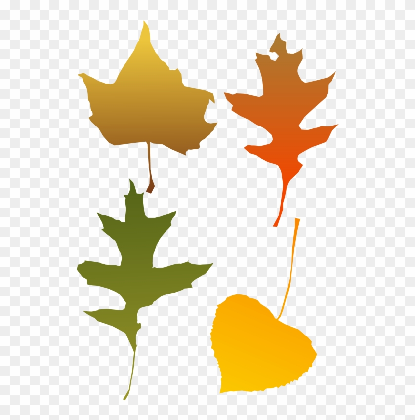 Autumn Leaves - Autumn Leaf Clip Art, HD Png Download #264296