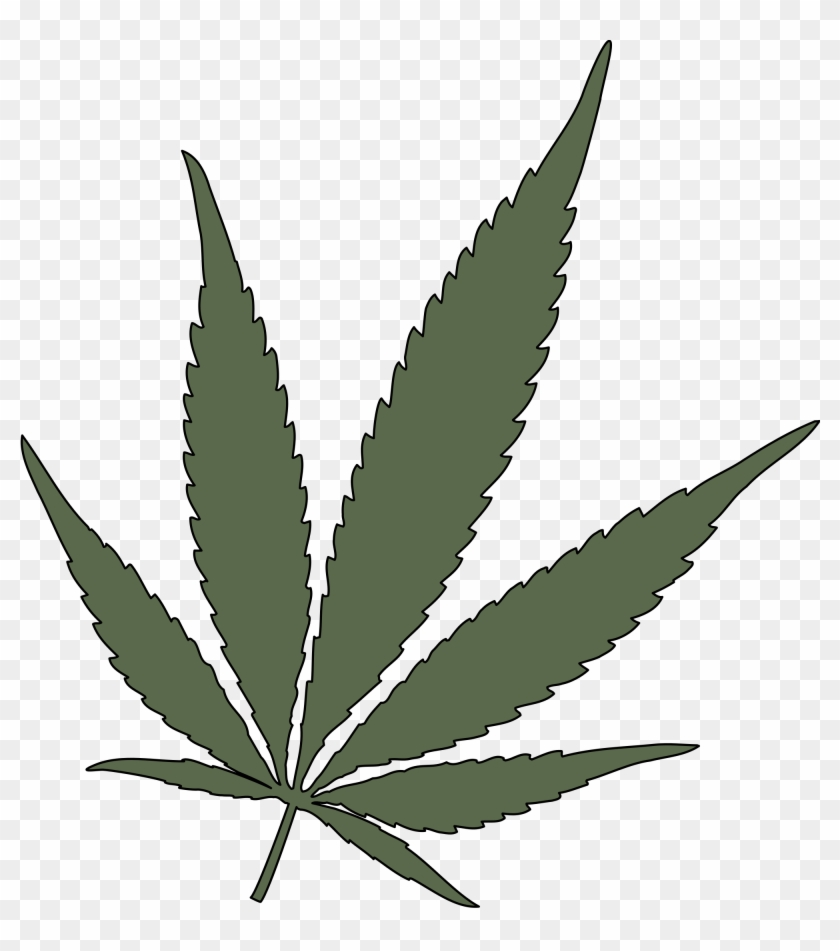 Feuille De Cannabis Png Transparent Marijuana Leaf Vector