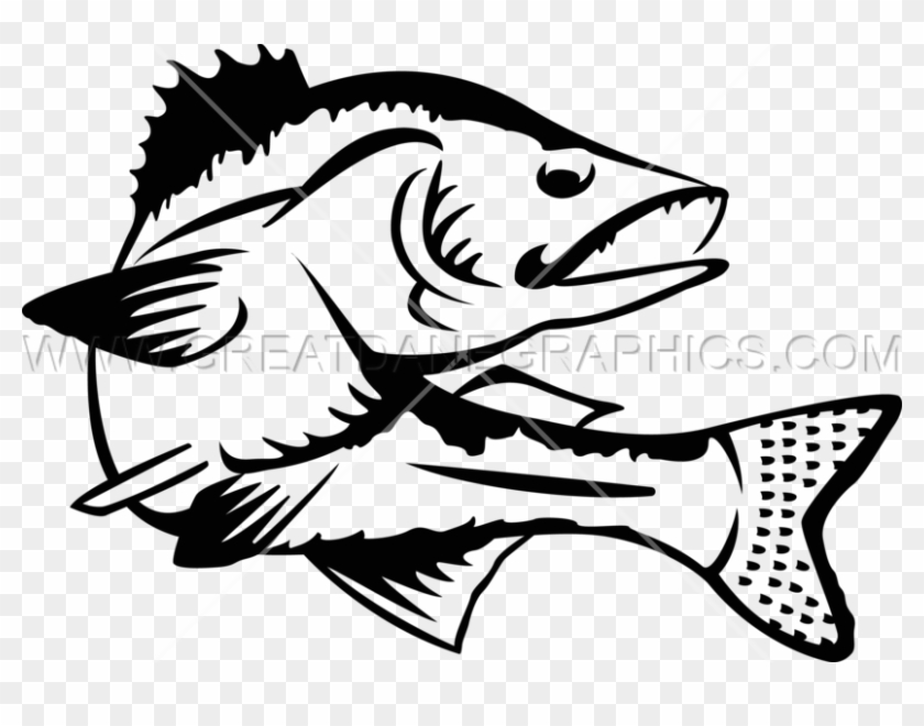 Download Png Royalty Free Download Walleye Clipartmansioncom Walleye Images Black And White Transparent Png 2612712 Pikpng