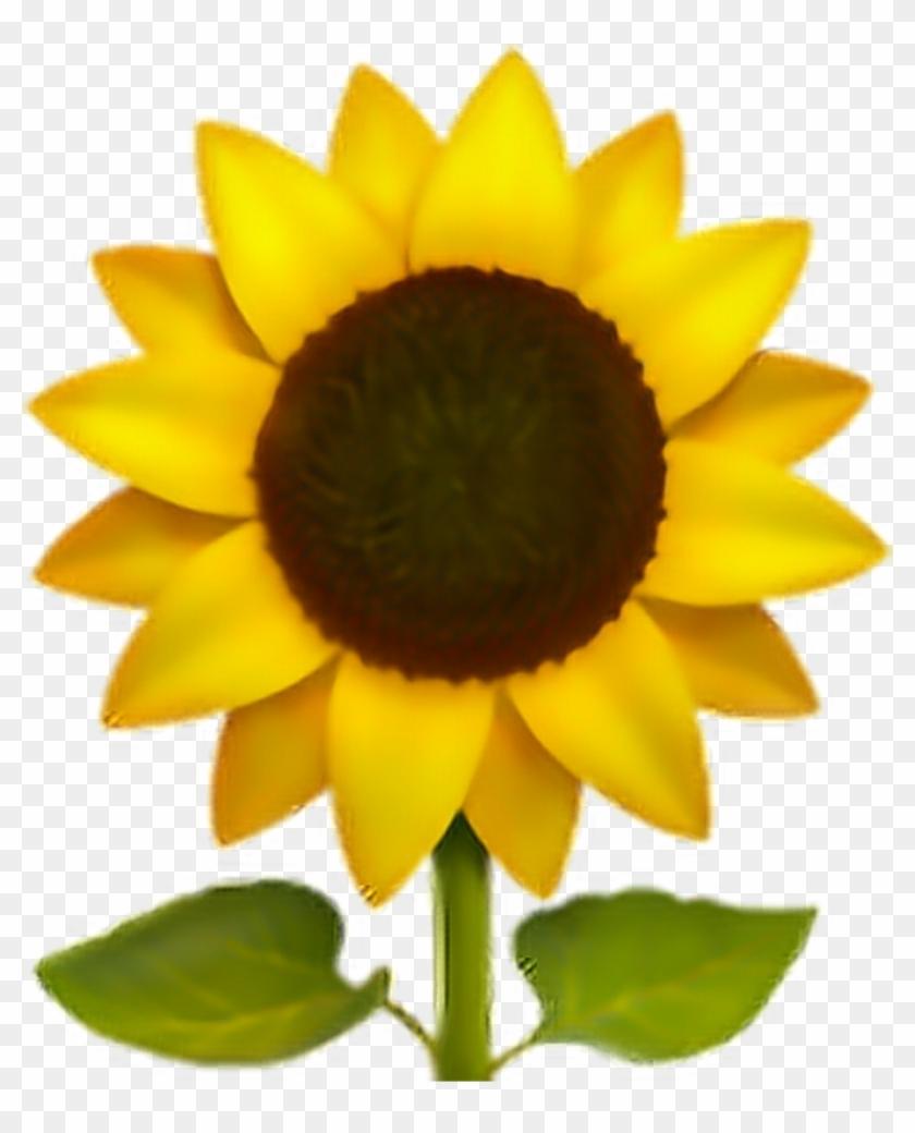 #emoji #flor #flower #png #pngs #pngtumblr - Iphone Sunflower Emoji Clipart #2616123