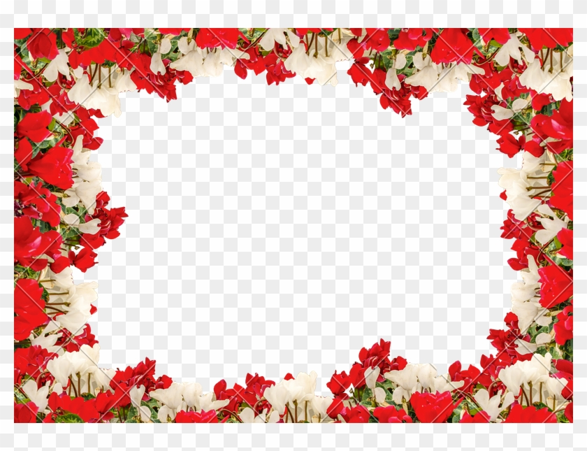 Latest White Landscape Background With Flowers Borders Stock