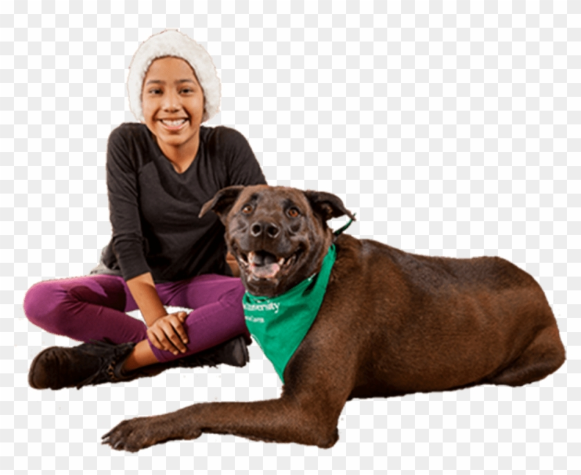 One Cure For Pets And People - Companion Dog Clipart #2719951