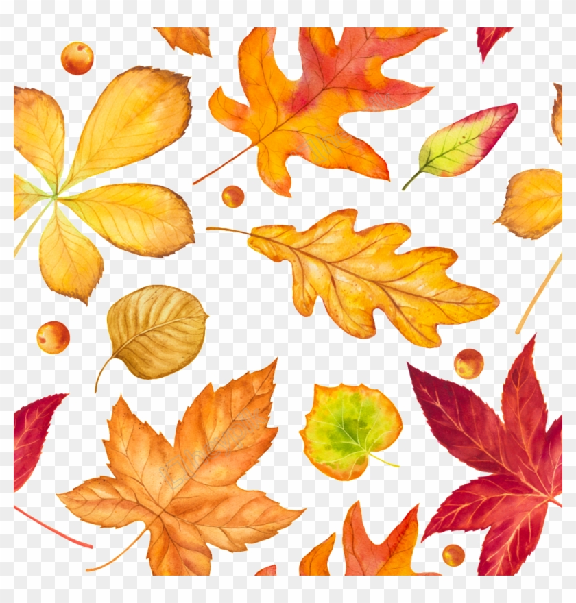 Hand Drawn Leaves Falling Free Download Ai - Fallen Leaves Autumn Drawing Clipart #2770600