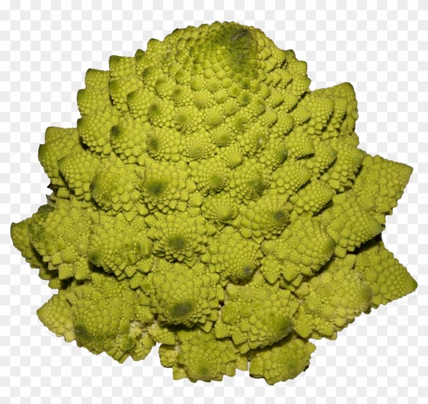 Romanesco Broccoli - Broccoli Clipart #284252