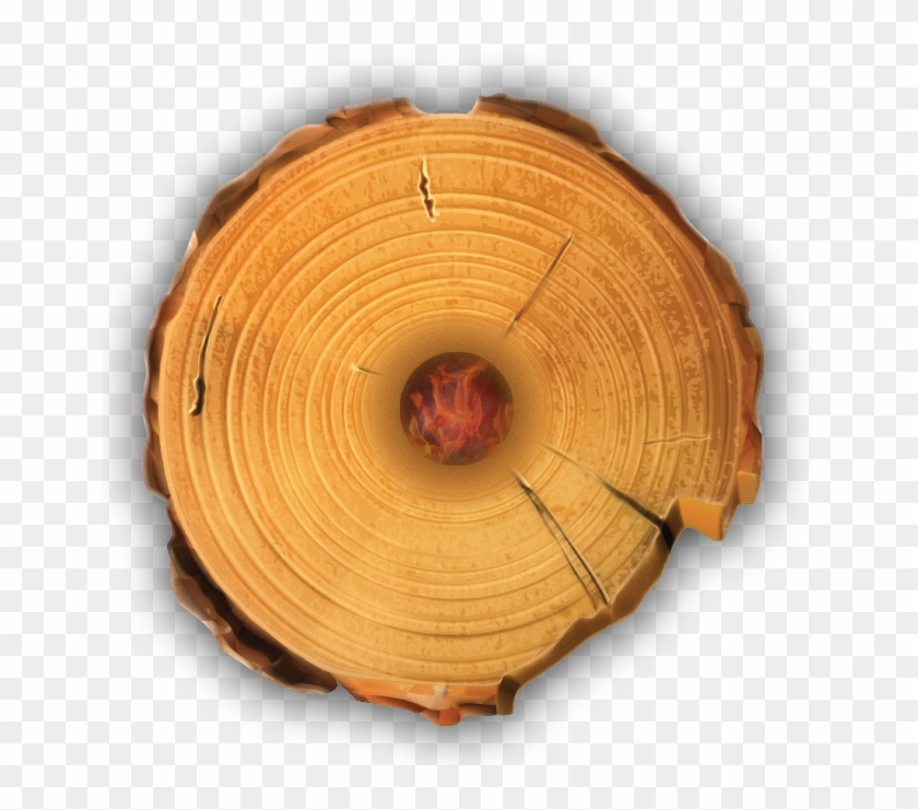 Timber Tote Log Top View - Tree Stump Wood Rings Clipart #2848083