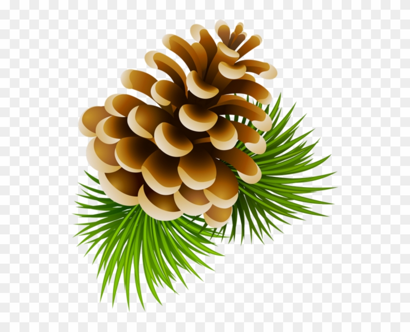 Pine Cone Clipart - Png Download #2857767