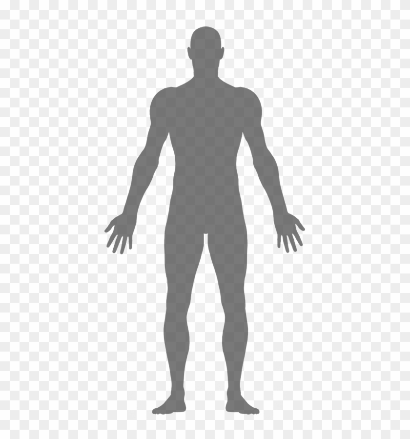Our Bodies Women Body Clipart Silhouette Png Download 2867130 Pikpng