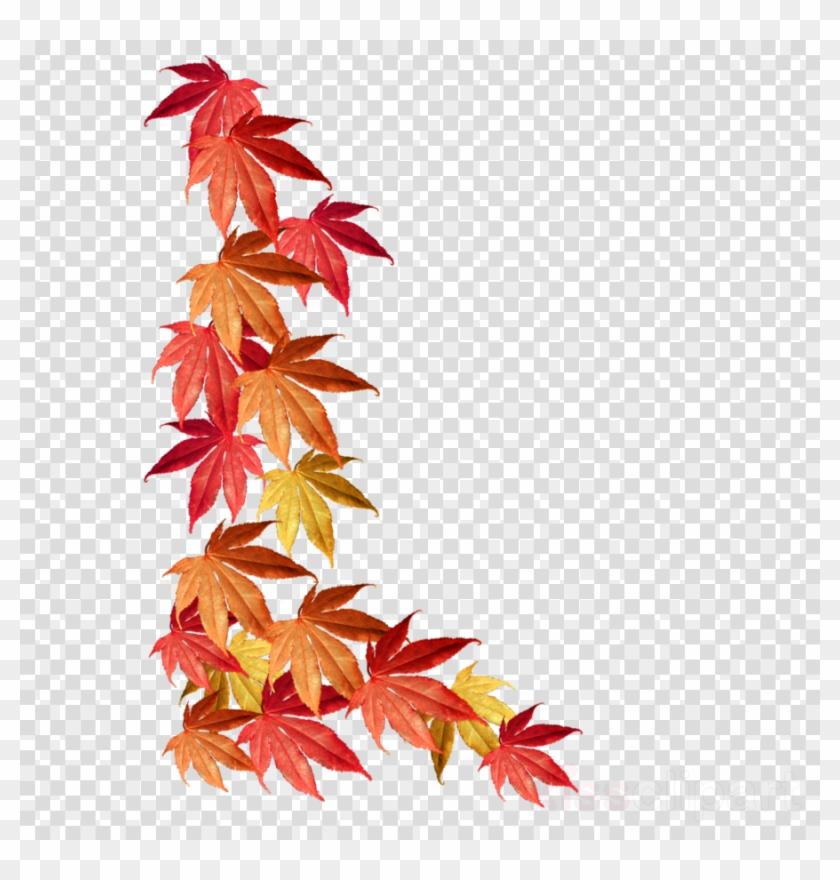 Leaf Autumn Tree Transparent Thanksgiving Border Transparent - Autumn Leaves Border Png Clipart #2919383