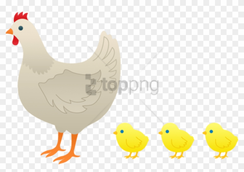 Funny cartoon chicken with blank sign Royalty Free Vector