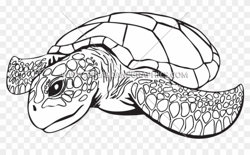 Clip Royalty Free Download Line Drawing At Getdrawings - Sea Turtle Line Art - Png Download #2951511