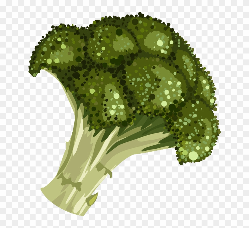 Broccoli Png Cartoon Clipart@pikpng.com