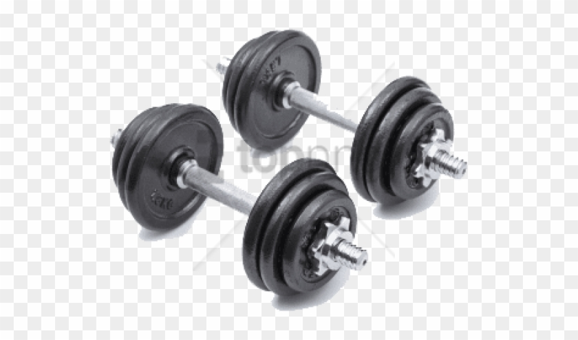 Free Png Dumbbell Png Png Image With Transparent Background - Dumbbell Clipart #2961110