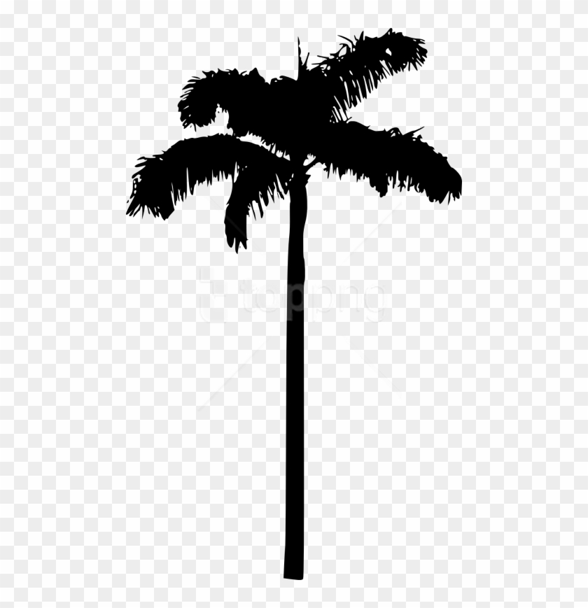 Free Png Palm Tree Png Transparent Background Palm Tree Clipart Black 3014012 Pikpng Clouds weather svg & png, cartoon clouds, clouds clipart png, transparent included, for personal & commercial use. free png palm tree png transparent