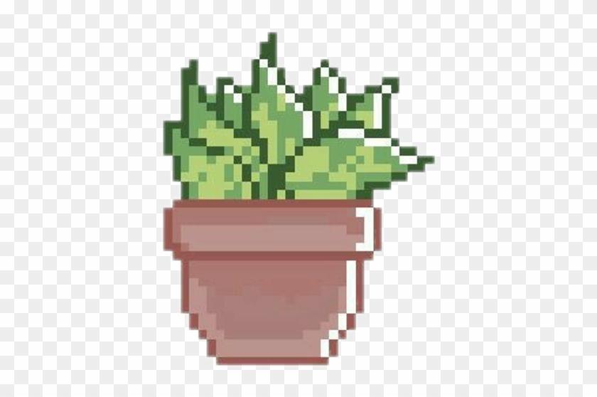Cactus Png Pixel Pixel Art Succulents Transparent Clipart