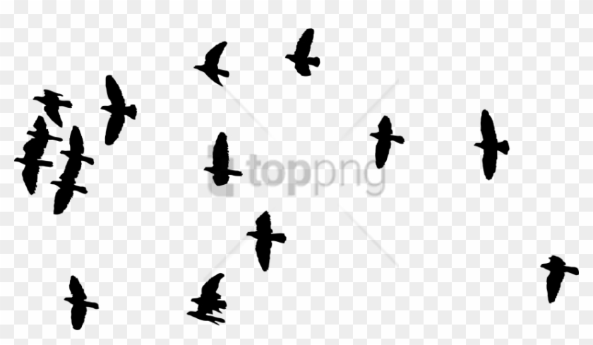 Free Png Flock Of Birds Silhouette Png Image With Transparent - Silhouette Of Flock Birds Clipart #3085023