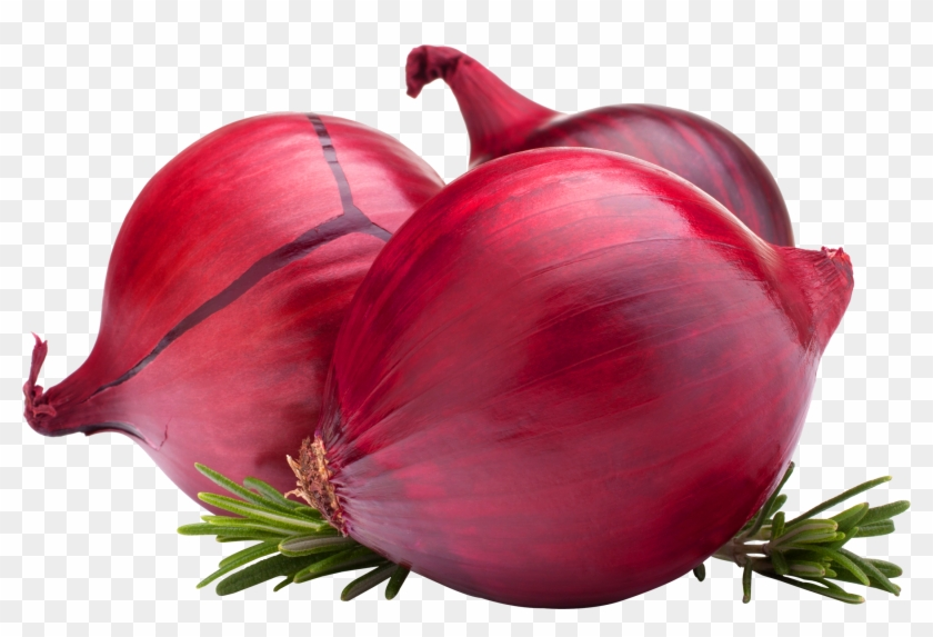 Onion Png Image - Onion Export Banners Clipart@pikpng.com