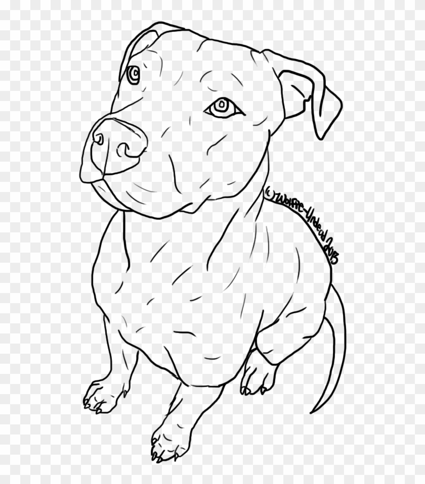 Drawn Pitbull Body Drawings Easy To Trace Clipart 3237309 Pikpng
