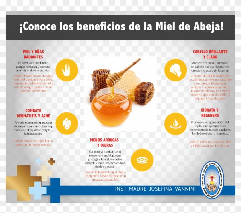 La Miel De Abeja Es Uno De Los Productos Naturales - Online Advertising Clipart #3298509