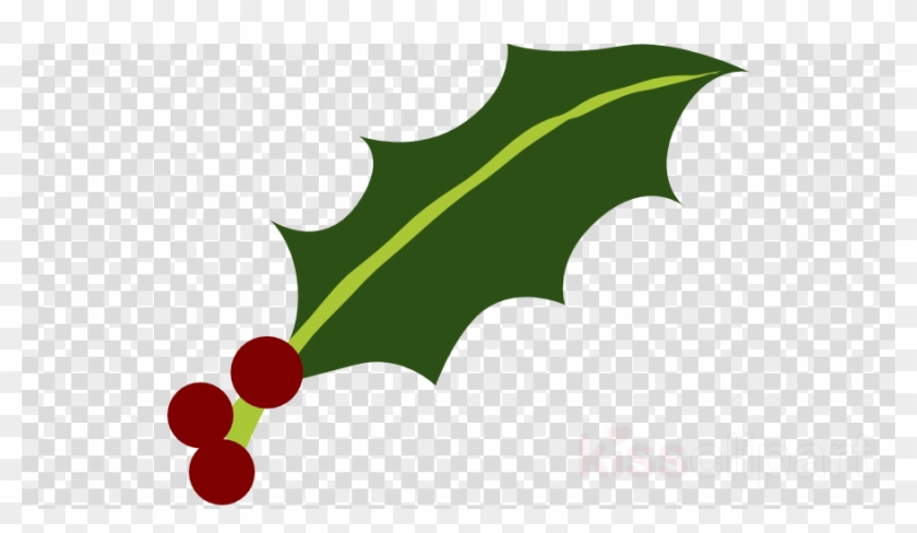Download Holly Leaf Png Clipart Common Holly Yaupon - Question Marks No Background Transparent Png