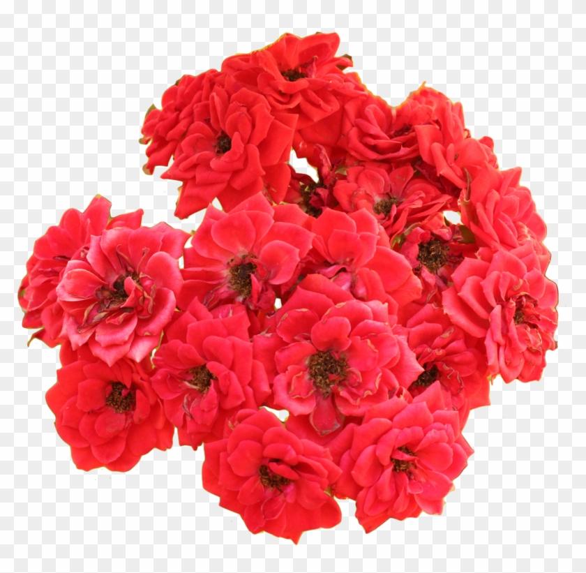 Flores Brancas Rosas Vermelhas Bouquet Clipart 3320757 Pikpng